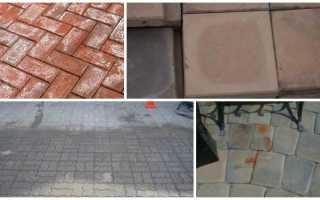 Как очистить тротуарную плитку от цемента, высолов, жирных пятен и других загрязнений