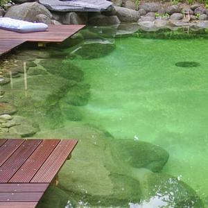 Бассейн в виде природной заводи
